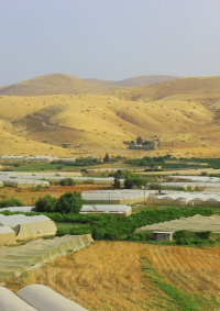 الاحتلال يغلق فتحات مياه في الجفتلك شمال أريحا
