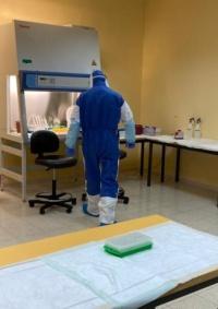 الصحة: تسجيل 204 إصابات جديدة بفيروس كورونا في الضفة