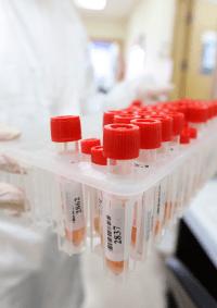 الصحة: 12 وفاة و494 إصابة جديدة بفيروس كورونا