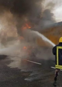 الدفاع المدني يُخمد حريقًا وينفذ حملة لإزالة الأشجار بجنين