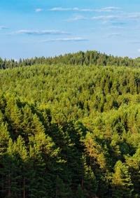 80% من الموائل الطبيعية في أوروبا غير صالحة لسكن الحيوانات