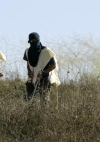 مستوطنون يهاجمون المنازل في تجمع التواميين جنوب الخليل