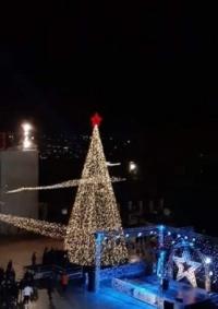 بيت لحم تضيء شجرة عيد الميلاد