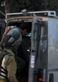 الاحتلال يعتقل ثمانية مواطنين من الضفة