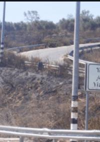 مستوطن يزعم فرار شخص بحوزته سكين قرب مستوطنة