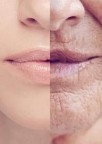 كيف تلعب المكملات الغذائية دورا فى حمايتك من أمراض تقدم العمر؟