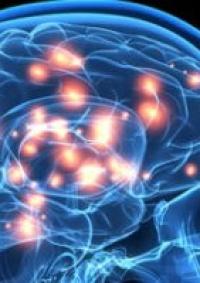علماء روس يعملون على تطوير نظام للتحكم بالكمبيوتر باستخدام العين والدماغ