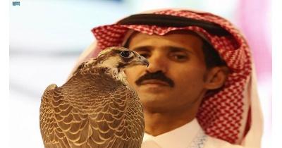 صقر سعودي يباع بأكثر من 54 ألف دولار!