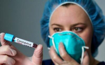علماء: فيروس كورونا