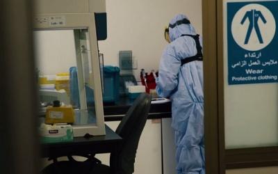 الصحة: تسجيل 244 إصابة جديدة بكورونا
