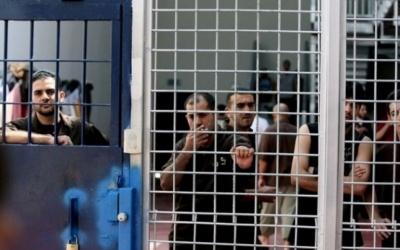 الاحتلال ينقل الأسير الجريح علي عمرو إلى