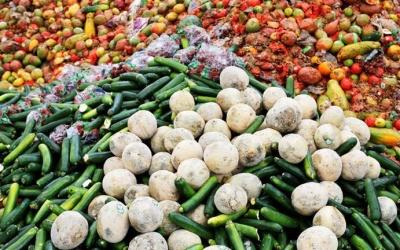 منتجات غذائية بـ 400 بليون دولار مصيرها سلة المهملات في أميركا