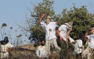 مستوطنون يعتدون على فريق هيئة تسوية الأراضي ويستولون على جهاز